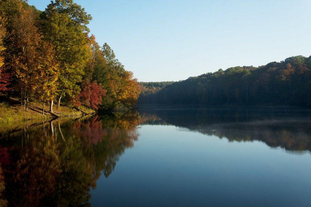Rose Lake